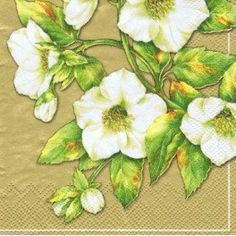 Mesafina 3 Ply Paper Luncheon Napkins Set of 20 - White Flower Mesafina Napkins Set, Paper Napkins, Napkin Decoupage, Gold Background, White Flowers, Party Supplies, Stationery, Tableware, Creamy White
