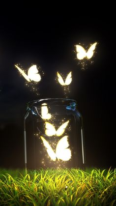 Character Inspiration, lighted glowing lightening butterflies flying out of jar, Fantasy Butterfly Jar Android Wallpaper Butterfly Wallpaper, Galaxy Wallpaper, Nature Wallpaper, Wallpaper Backgrounds, Wallpaper Samsung, Trendy Wallpaper, Iphone Wallpaper Lights, Screen Wallpaper Hd, Beautiful Wallpaper For Phone