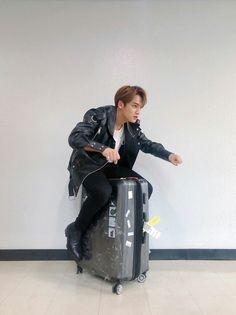 Kim Mingyu-ssi, what are you doing? Woozi, Jeonghan, Wonwoo, The8, Seungkwan, Seventeen Memes, Mingyu Seventeen, Seventeen Debut, Dino Seventeen