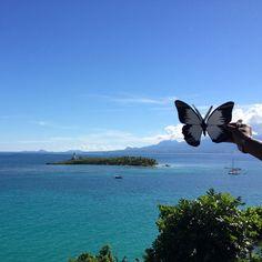 #Effetpapillon, Gosier, Guadeloupe - TEDxPointeàPitre