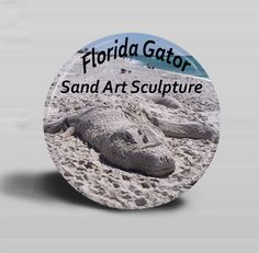 Forgot your souvenir from Florida? I can help you out with my BUTTON MAGNET  Florida Gator   Sand Art by CreativeXpression1, $4.75