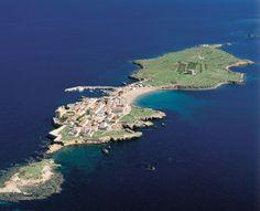 Playas de la Isla de Tabarca, Alicante. Aquí tenemos uno de los fondos marinos más espectaculares de la provincia, un entorno ideal para disfrutar del buceo en una reserva marina protegida.