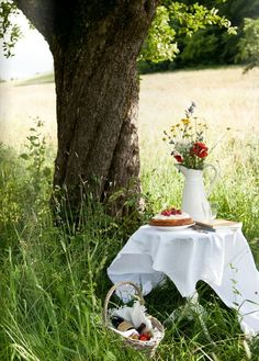 Picnic in the French countryside