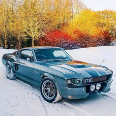 Ford Mustang 'Eleanor' Shelby Epicness in todays UK snowfall Shelby Gt500, Ford Mustang Fastback, Mustang Cars, Shelby Mustang, Classic Mustang, Ford Classic Cars, Cool Sports Cars, Sport Cars, Pony Car