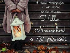 Ladder Decor, November, Seasons, Home Decor, November Born, Decoration Home, Room Decor, Seasons Of The Year, Home Interior Design
