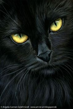 Black cat by Angela-Carmen Griehl-Groß. If you like Black cats. visit this tal… Black cat by Angela-Carmen Griehl-Groß. If you like Black cats. visit this talented artists web site where she shows many more… Cool Cats, I Love Cats, Crazy Cats, Black Cat Painting, Black Cat Art, Black Cats, Black Cat Drawing, Beautiful Cats, Animals Beautiful
