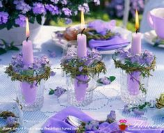 Beautiful purple center piece.