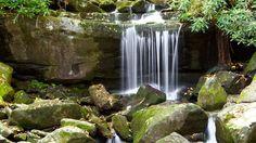 อุทยานแห่งชาติเกรต สโมกกี เมาน์เทนส์ https://www.expedia.co.th/Great-Smoky-Mountains-National-Park.d6025878.Travel