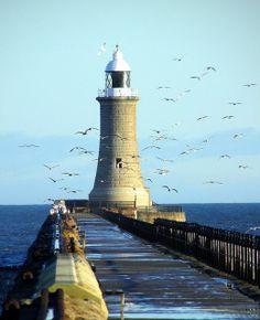 Lighthouse in Tynemouth, England, UK