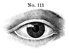 Eye No. 111