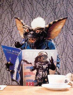 Remember Stripe, from the movie Gremlins? Les Gremlins, Gremlins Gizmo, 80s Movies, Scary Movies, Kitsch, Amblin Entertainment, Grunge, Pop Culture Art, Arte Horror