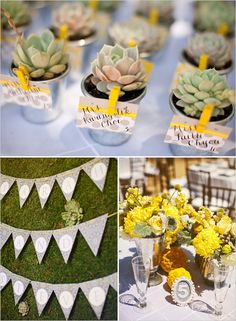 more of that wedding.... I'd dye the succulents with food coloring to my wedding colors for suture tho
