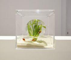 NEWS - MISAWA DESIGN INSTITUTE | Misawa design laboratory | Haruka Misawa