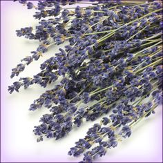 put a sprig of lavender in every room of your house. It will spell wonderful.