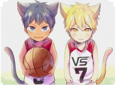 Who wants to play with the kittens? Akashi Kuroko, Kise Ryouta, Akashi Seijuro, Kuroko No Basket, Akakuro, Kuroko's Basketball, Manga Art, Cute Kids, Chibi