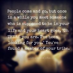 "People come and go, but once in a while you meet someone who is supposed to be in your life and your heart goes, ""Oh THERE you are. I've been looking for you."" You've found a member of your tribe. ~sweatpantsandcoffee.com"