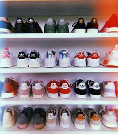 Pin by Great Leggings N' More on Adidas Gear in 2019 Cute Shoes, Me Too Shoes, Shoe Wall, Baskets, Creative Shoes, Shoe Organizer, Shoe Storage, Shoe Closet, Shoe Collection