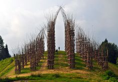 The base of Mount Arera in Nothern Italy has just moved up to the top of my travel bucket list. It is where Italian artist Giuliano Mauri built the framework for his Cattedrale Vegetale, a cathedral-like structure formed… Land Art, Landscape Art, Landscape Architecture, Expositions, Italian Artist, Environmental Art, Outdoor Art, Conceptual Art, Public Art