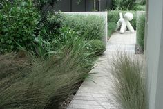 A coastal backyard in Raumati, NZ Landscaping With Rocks, Modern Landscaping, Outdoor Landscaping, Landscaping Plants, Ferns Garden, Garden Mum, Side Garden, Rain Garden, Garden Ideas Nz