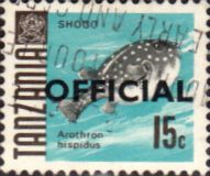 Tanzania 1967 Fish Official Fine Used SG O22 Scott O11 Other Tanzania and British Commonwealth Stamps HERE!