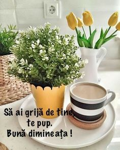 Coffee Time, Morning Coffee, Good Morning, True Words, Diy And Crafts, Planter Pots, Instagram, Facebook, Night