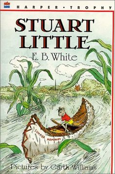 Stuart Little Unit with FREE chapter by chapter questions, and activity suggestions.