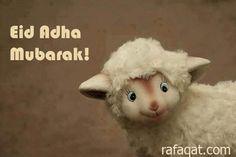 Eid mubarok part2