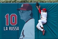 Game 2 of the NLDS Jon Jay catch of the postseason so far !!  10-08-12