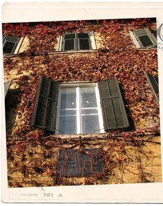 Windows | 10 Fab Architecture Windows