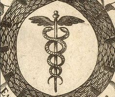 Snake-symbol.  Ida/Pingala.  Male/female energy.  Lymph and blood.  AC and DC