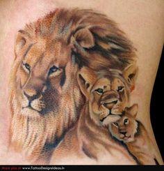 lion tattoos designs | Lion Tattoos animal