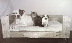 Dog / Cat Basket, Bed, Crate, House. DIY Pallet / Real old wood, wheels.
