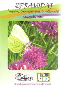 Staré odrůdy - Gengel o.p.s. Herbs, Herb, Medicinal Plants