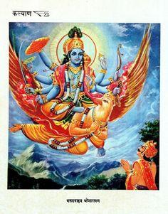 Sri Vishnu on Garuda Hindu Print Kalyan (Hindi magazine) Gita Press, Gorakhpur. Radha Krishna Love, Radhe Krishna, Sai Baba Photos, Religious Pictures, Ganesha Art, Hd Wallpapers For Mobile, Lord Vishnu, Epic Art, Hindu Deities