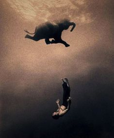 Gregory Colbert Photography – Ashes and Snow (24 Pictures) > Film-/ Fotokunst, Illustrationen > ashes, colbert, illustrations, pictures, snow, world renown