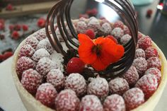 Lækker hindbærlagkage med marcipan og chokolade! Pyntet med chokolade og en smuk blomst fra en tallerkensmækker!