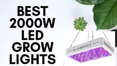 best led grow lights are not easy to find out.We disscuss here the 5 best led grow lights that will help you to grow plants indoor.