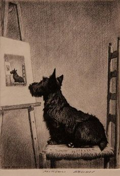 """Scottish Terrier, """"Looks Just Like Me"""", by Morgan Dennis (American, West Highland Terrier, Vintage Dog, Art Graphique, Dog Paintings, Pics Art, Terrier Dogs, Westies, Little Dogs, Pet Portraits"""