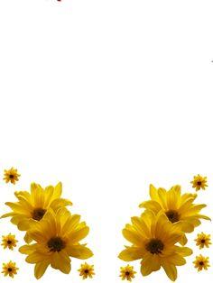 Flower Frames Png Flower frame png by