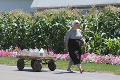 Amish woman in Lancaster PA.