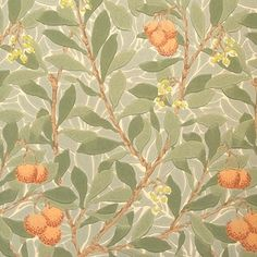 William Morris Arbutus Tapet