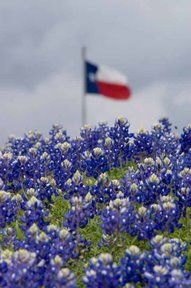 The Texas flag flying high and blue bonnets.  Nothing makes us more Texas proud.