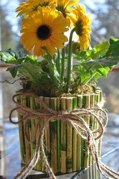 bamboo terracotta pots - Google Search