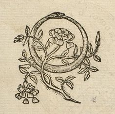 "Pictura of Aneau, Barthélemy: Picta poesis (1552): ""The RING, a snake returning unto himself, is the Hieroglyph of Eternity; while the ROSE, who perishes the very day that she is born, is a sign not obscure of the body's ephemeral nature. Let this be my device: for clearly I am made of mortal body and eternal soul."""