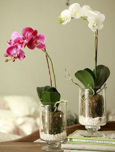$9.47 home decor/ home accessories artificial flower with transparent cup case from zzkko.com