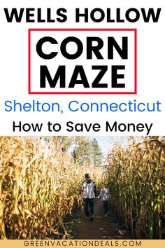 Promo code, coupon for family-friendly corn maze in Shelton, Connecticut with ice cream. Halloween, autumn, fall event. Explore in night with flashlights. #cornmaze #fall #autumn #Shelton #Connecticut #CT #NewHaven #EastHaven #WestHaven #Bridgeport #Trumbull #Milford #Naugatuck #NYC #NewYorkCity #Derby #Halloween Vacation Deals, Travel Deals, Vacation Spots, Pumpkin Chocolate Chips, Mint Chocolate Chips, East Haven, Newhaven, Hot Apple Cider, Mint Cookies