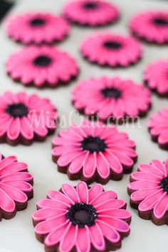 pink gerber daisies - so pretty!