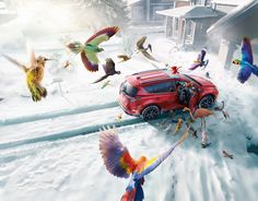 #Cgi #Photography #narrative #photographer #advertising #storyteller #location #snow #car #automotive #birds #tropical #studio #lighting #design #contemporary #photo #animal