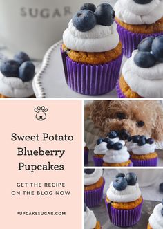 """What started off as a dream has grown into a variety of pupcake flavors. Each pupcake recipe is made with love and a story, or shall I say """"pup-tale. Puppy Treats, Diy Dog Treats, Homemade Dog Treats, Healthy Dog Treats, Dog Cake Recipes, Dog Biscuit Recipes, Dog Treat Recipes, Keto Recipes, Cake Dog"""