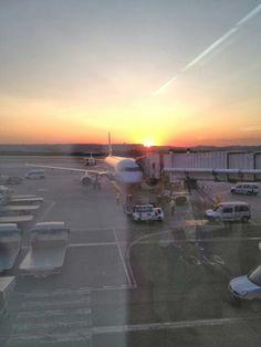 volar al amanecer